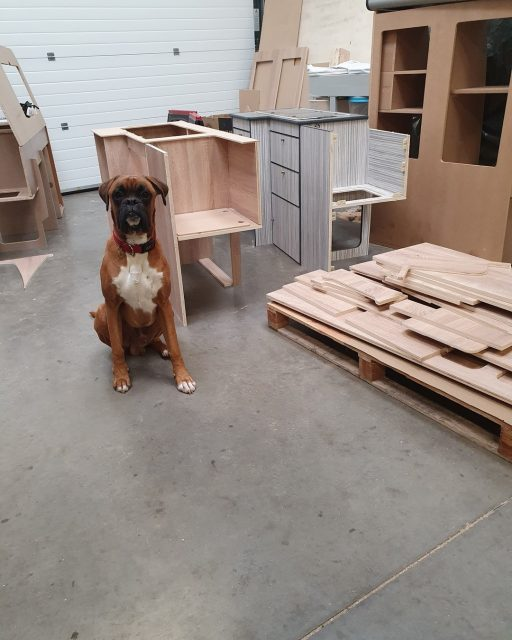 More kitchens getting ready for despatch. I have Bruce keeping his eye on operations today making sure everything get done 😂 Don't forget folks we're offering £150 off all kitchens ordered before the end of October. https://davanco.co.uk/ #campervanconversion #campervanconversionkit #camperinterior #diycamper #buildyourowncamper #vwcampervan #vwt6 #boxerdog #workdog